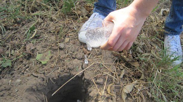 Lluvia sólida, el invento mexicano que puede solucionar las sequías
